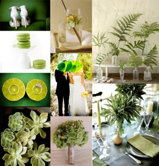 Eco-themed inspiration board