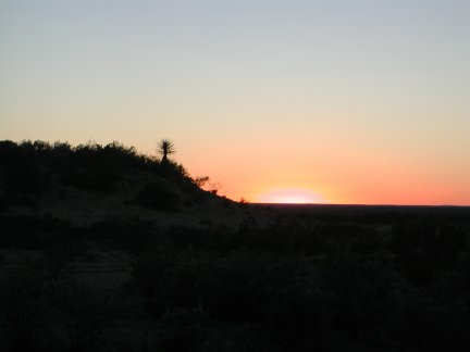 A lone Spanish Dagger sillouhuetted against a far horizon at day's end at the ranch.
