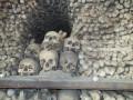 Sedlec Ossuary: A Church Made of Human Bones in Kutna Hora, Czech Republic