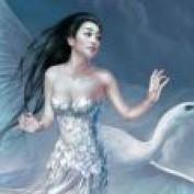 May Ming Wang profile image