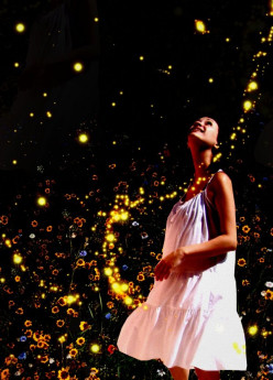 Photo Series-Fireflies