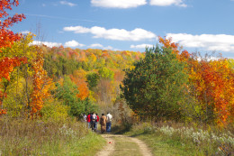 Hikers on the trail to enjoy fall colours.