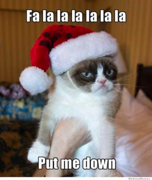 "Grumpy cat ""I hate my boss"""