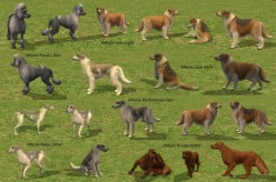 The Sims 3 expansion Pets