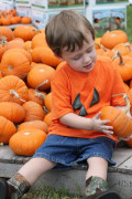 Family Fun This Fall and Winter at Little Expense