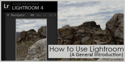 How to Use Lightroom (A General Introduction)