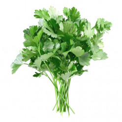 Parsley, Uh Huh, Yeah. What Is It Good For? Absolutely Everything!