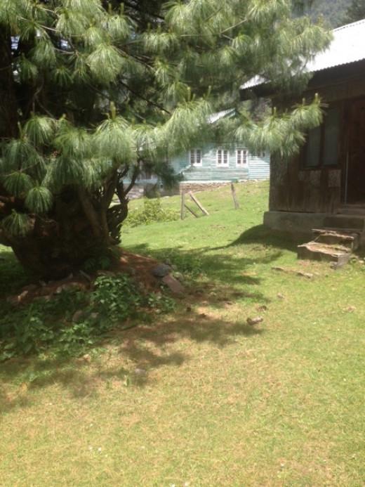 log cottages.