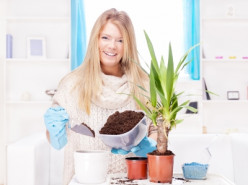 give your plants room to grow