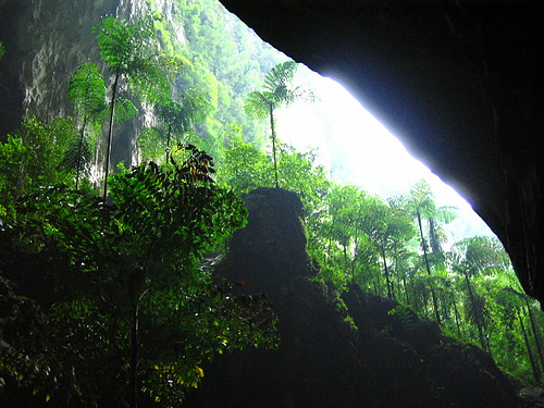 Entrance to the Deer Cave in the Gunung Mulu National Park, Sarawak