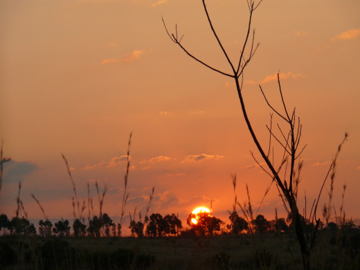 Swazi Sunset