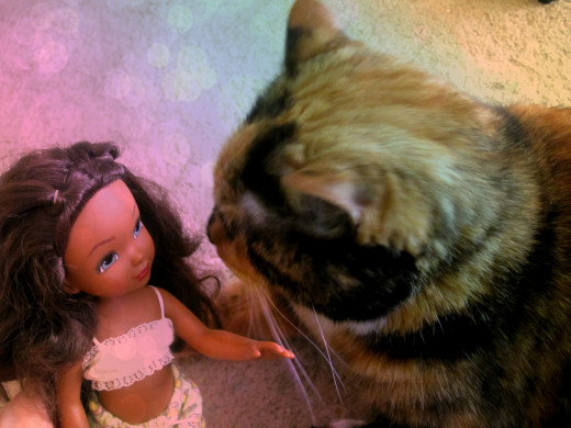 """Coco-Puff """"talking"""" to doll"""