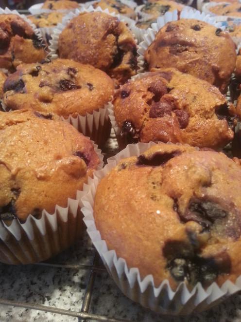 Blueberry, Banana, Chocolate Chip Muffins!