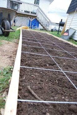 Urban Gardening: How to Build a Raised Bed for Square Foot Gardening