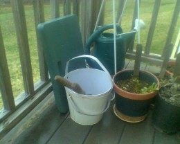 My gardening tools, used for the practical side of writing a how-to book about growing your own food.