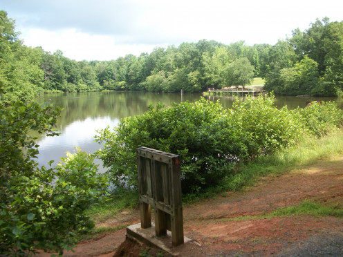 Fishing is allowed at this pond. In the summer you can see turtles sunbathing on the rocks.