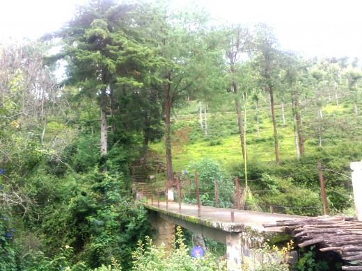 A bridge en-route a trek destination to a water-fall.