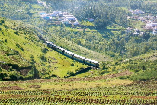 The mesmerizing Nilgiri Mountain Railway!
