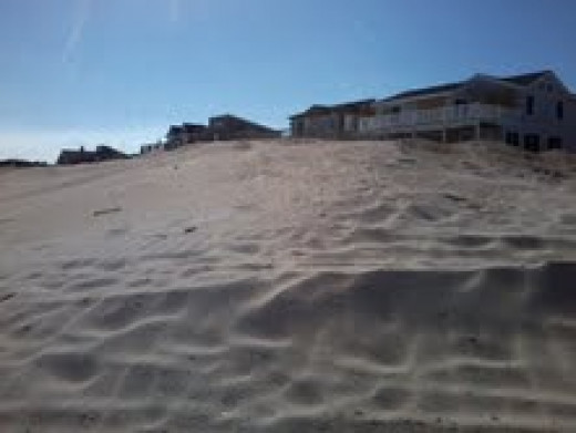 All the Dunes on the Island being rebuilt higher to protect us form any future storms and Ocean surges.