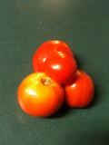 Homemade Roasted Tomato Pesto