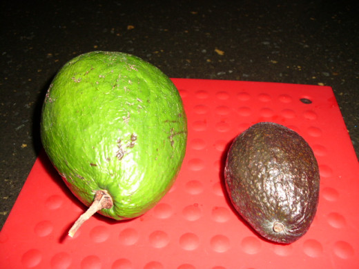 This is the avocado from my girlfriends backyard! It huge compared to the one from my local grocer!