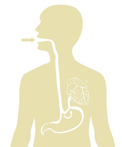 symptoms of the stomach flu or viral gastroenteritis