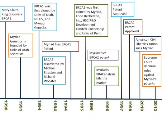 BRCA1&2 timeline