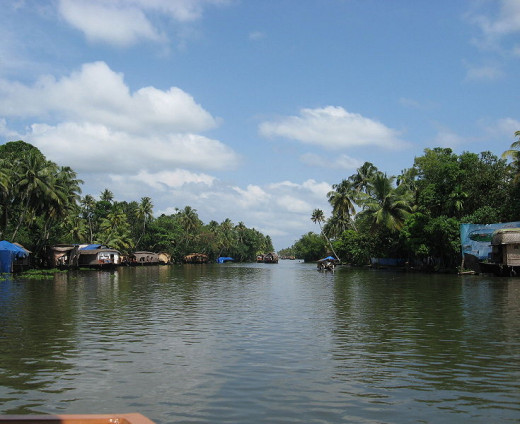 The backwaters of Kerala.