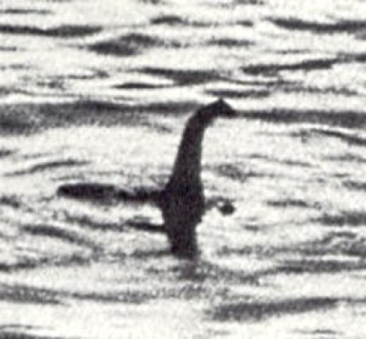 The famous Loch Ness monster photograph was proven to be a fake when the photographer admitted it. The shadows don't seem to align.