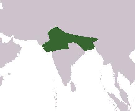 The image showing empire of Harsha at it`s greatest extent.