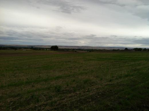 Farmland for Miles