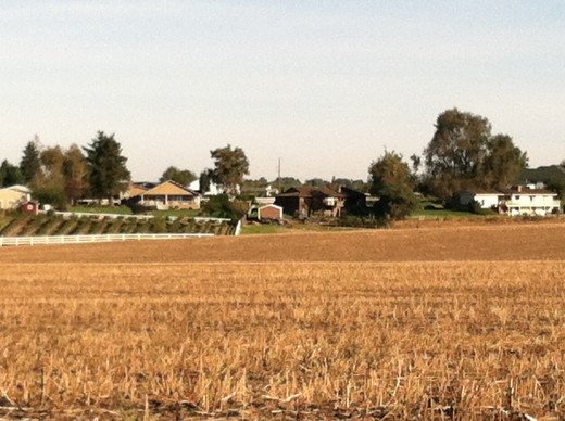 Agricultural Homes and Harvested Wheatfields