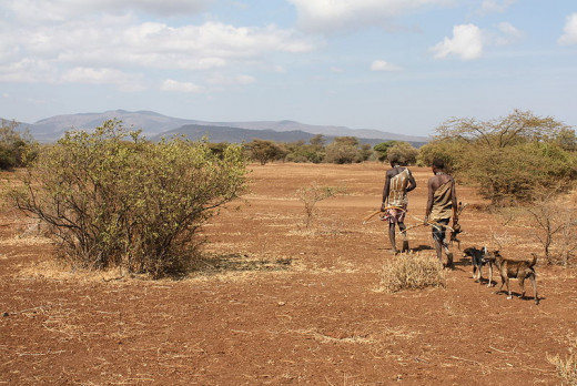 One way of redressing the balance is by reconnecting and reassessing our relationship with nature. Hunter gatherers such as the Hadza see themselves as a part of the land rather than owners of it.