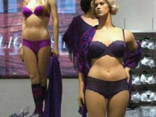 "These size 12 ""plus size"" mannequins starkly divided the female community with one half yelling, ""Hooray! A normal body image!"" and the other half yelling, ""This is encouraging us to be obese cows!!!"""