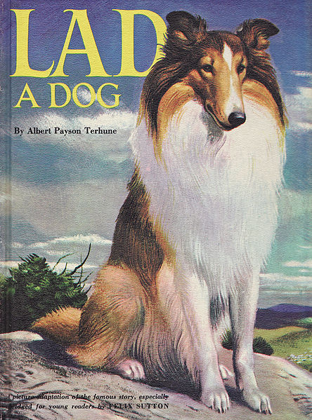 Cover of the abridged version of Lad: A Dog (1957), later reprinted in 1971–74: the dog is a derivative of Ralph Ray's unregistered work for an earlier cover (1950)—File:Lad A Dog (1950).jpg.