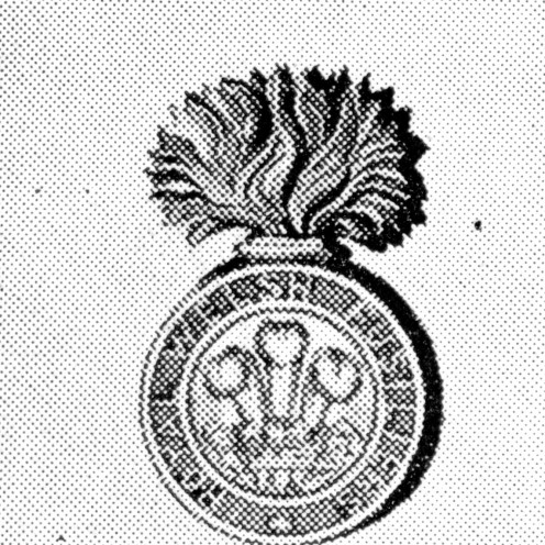 The Royal Welsh Fusiliers' badge. 23rd Foot. Grenade in gilt metal; Prince of Wales's plume within inscribed circle. Took part in all battles in American War of Independence.