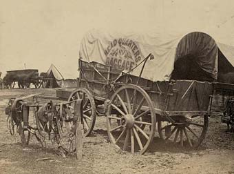 A supply wagon. One supply wagon per Company was normal in the early months of the War.