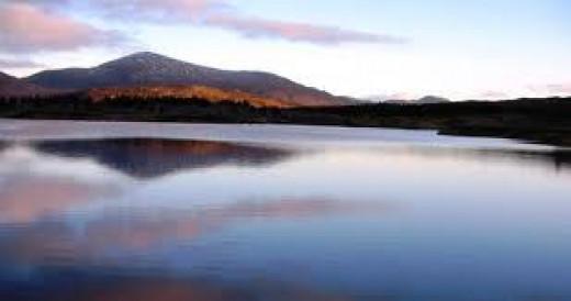 Ioruaidhe or Ruaidhri?