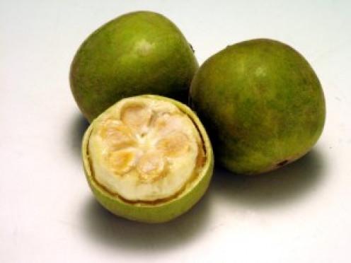 Unripened monk fruit