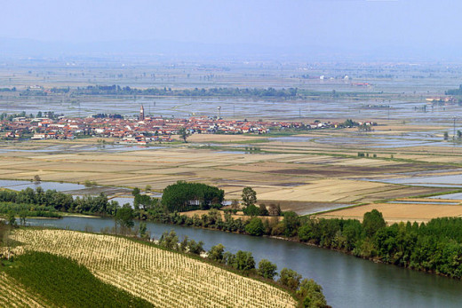Bend of the river through the rice fields of Vercelli (Piedmont).
