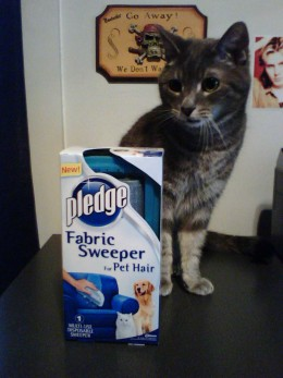 Kennedy isn't so sure about the Pledge Fabric Sweeper.
