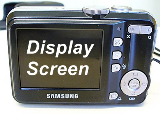 Display Screen of Compact Digital Camera