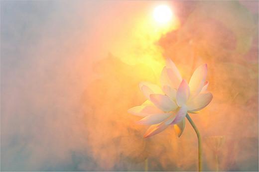 SunRise from Bahman Farzad flickr.com