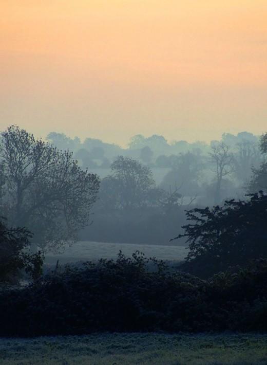Serenity from true2source flickr.com