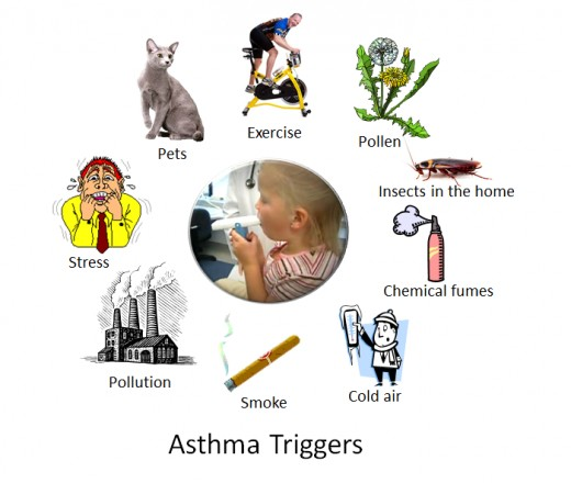 Triggers fro and Asthma attack. Why children outgrow the symptoms