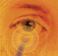 How to Find a Job In Biometrics