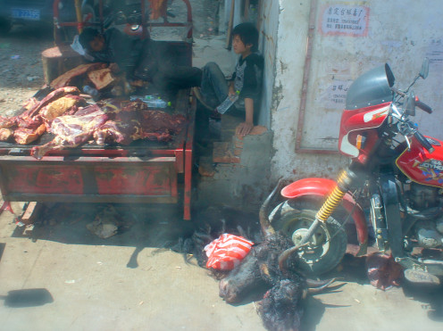 Bad Meat - this meat, the carcasses of the two bulls whose heads are still on the footpath, sat here for at least four days. Note the man sleeping on the meat. Somewhere on the Road to Danba, Sichuan Province.