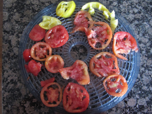 Tomatoes placed on a drying rack of my dehydrator.  I grow both yellow and red tomatoes for variety.
