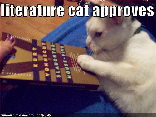 Cats understand me.