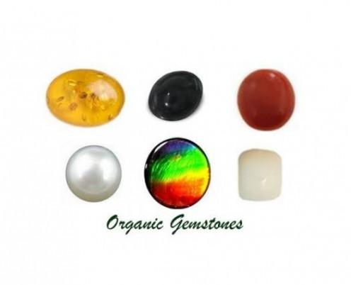 Organic Gemstones : Amber, Jet, Coral, Pearl, Ammolite and Ivory.